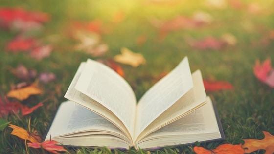 Lire un livre / Laurie Audibert / Coach Holistique