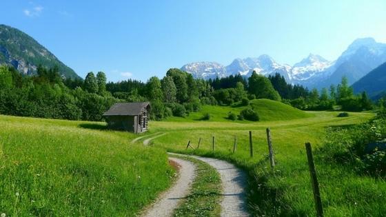 Se balader dans la nature / Laurie Audibert / Coach Holistique
