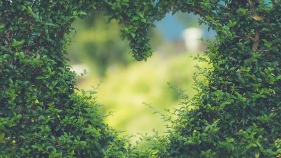 Clés pour s'aimer plus / Laurie Audibert / Coach Holistique