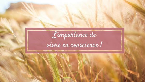 L'importance de vivre en conscience !
