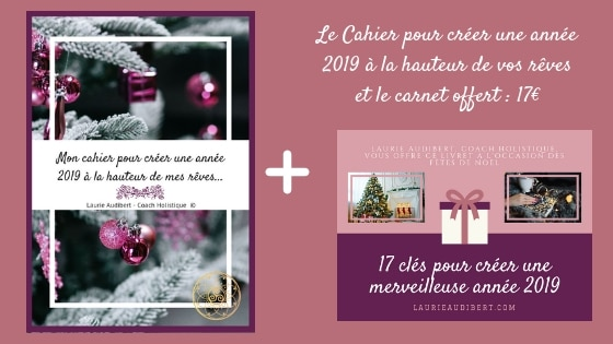 Le Cahier pour créer une année 2019 à la hauteur de vos rêves et le carnet offert / Laurie Audibert / Business Coach