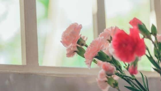 15 idées de mini rituels à faire / Laurie Audibert / Coach pour Entrepreneuses Spirituelles