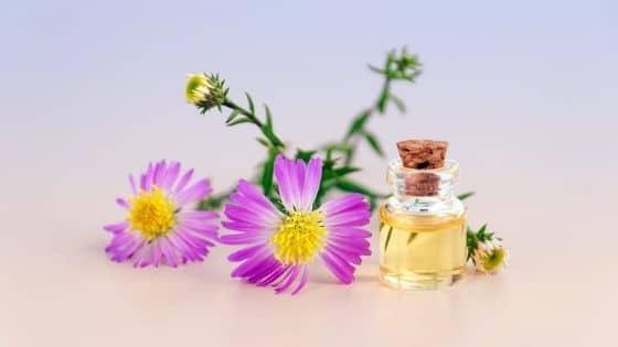 8 huiles essentielles bénéfiques aux entrepreneurs / Laurie Audibert / Coach Holistique en entrepreneuriat féminin