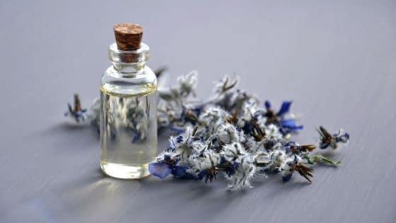 8 huiles essentielles bénéfiques aux femmes entrepreneurs / Laurie Audibert / Business Witch