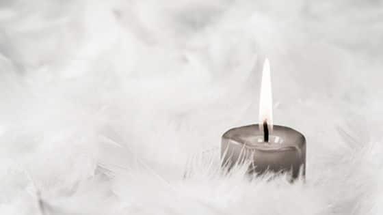 Comment les Anges peuvent vous aider à développer votre business / Laurie Audibert / Business Witch